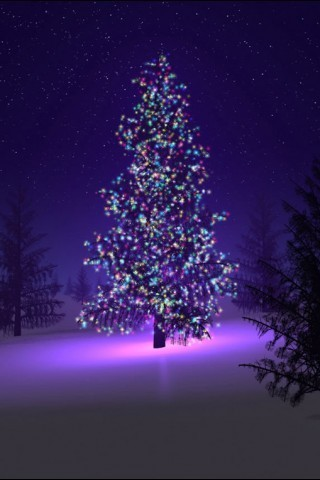 Picture for mobile phone BlackBerry 320*480 Christmas