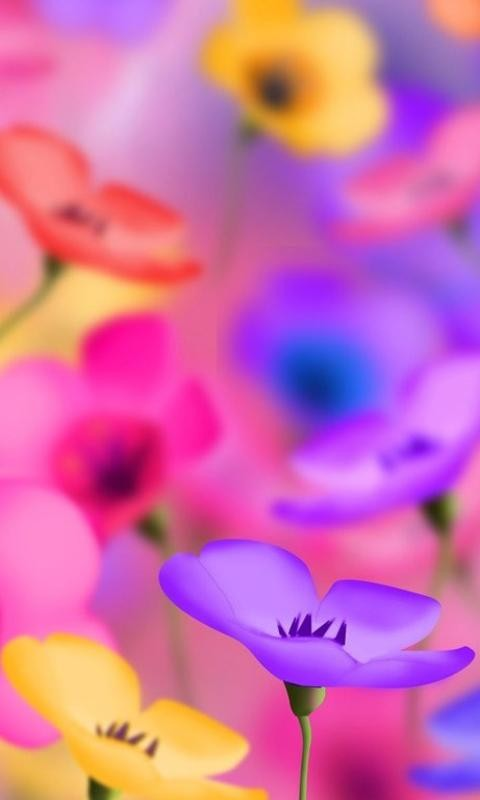 Funny screensaver for cellphone Acer 480x800 flowers