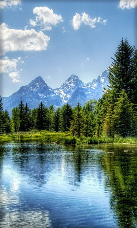 Beautiful wallpaper for mobile phone Nokia 480*800 nature